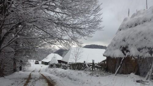 Comuna Batrana pe 21 decembrie 2014